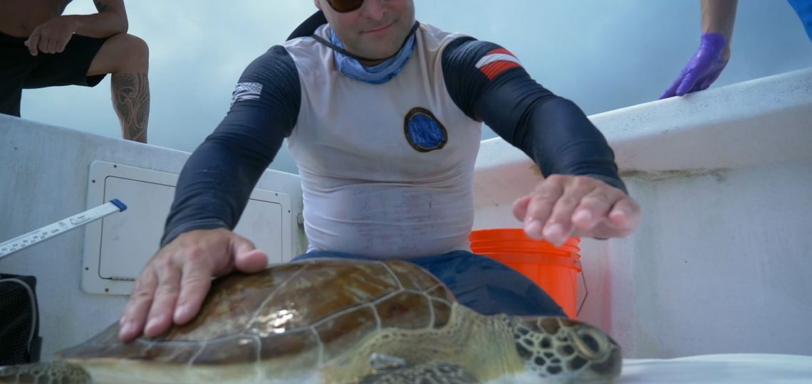 FORCE BLUE Wraps Successful Turtle Survey