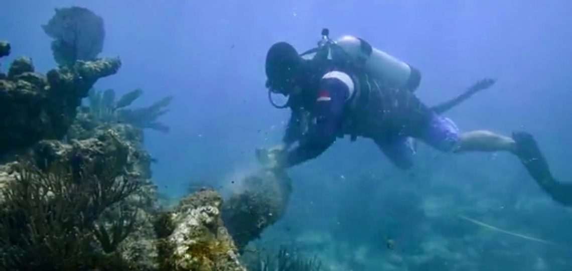Scuba Diving: Opportunities for Veterans